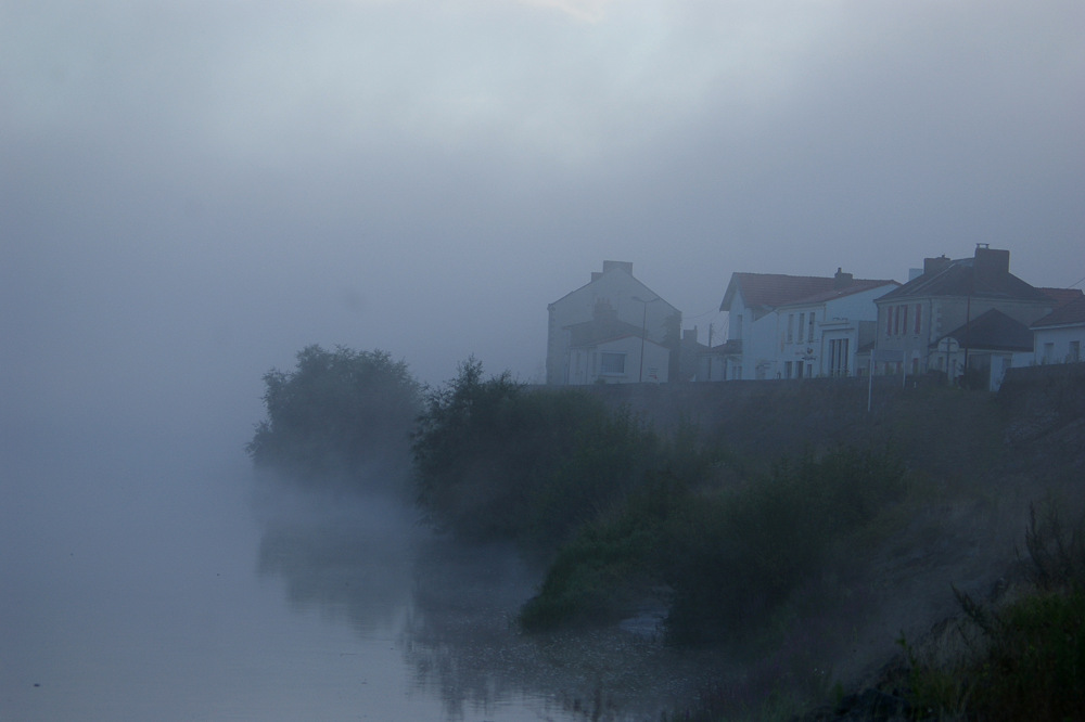 photoblog image In the mist 2/5