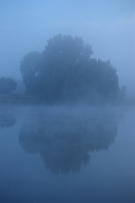 photoblog image In the mist 4/5