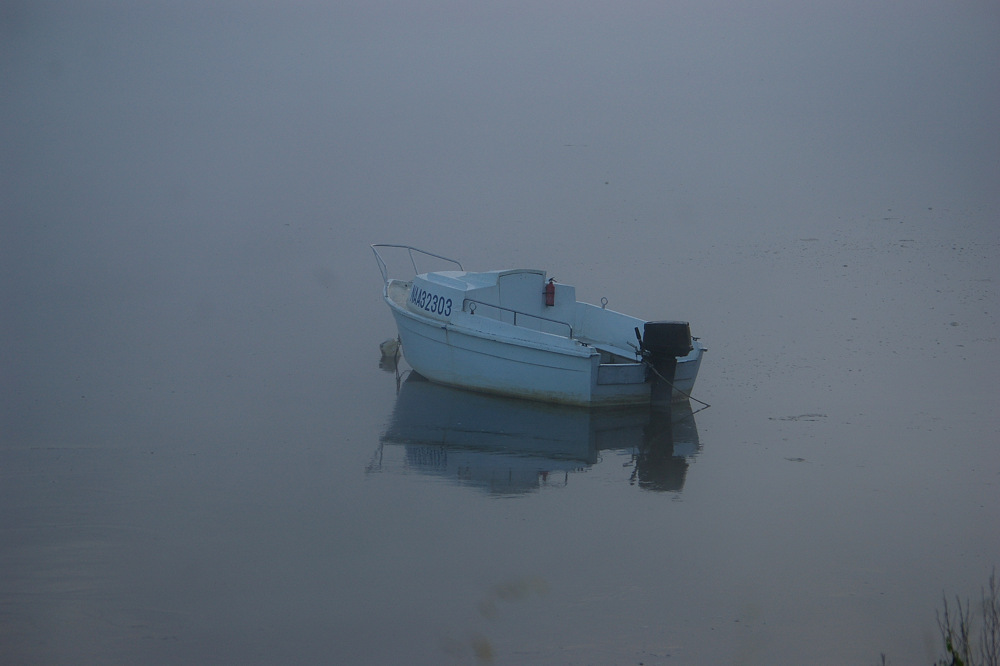 photoblog image In the mist 5/5
